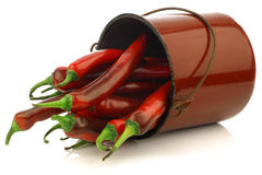 Fresh red chili peppers in a brown metal pot Royalty Free Stock Image