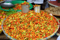 Fresh red chili peppers on Tomohon Traditional Market Stock Image