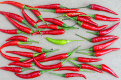 Fresh of red chilli and green chilli. Royalty Free Stock Photography