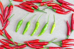 Fresh of red chilli and green chilli. Stock Photos