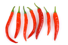 Fresh Red chillies Royalty Free Stock Image