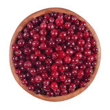 Fresh red cranberries in a wooden bowl on a white. Background Stock Image