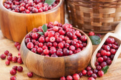 Fresh red cranberry Stock Photo