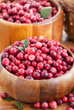 Fresh red cranberry Stock Photos