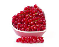 Fresh red currant berries fruit over white background Stock Photography