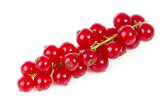 Fresh red currant berries fruit over white background Royalty Free Stock Photo