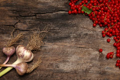 Fresh red currant berries and garlic on old wooden background Royalty Free Stock Photos
