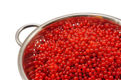 Fresh red currant berries with water drops in cola Stock Image