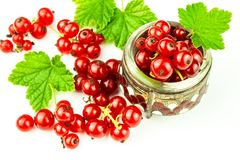 Fresh red currant berries on a white background. Red currant in  bowl with green leaf. Healthy food.  stock photos