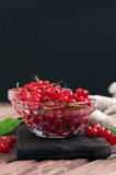 Fresh red currant berries Royalty Free Stock Photo