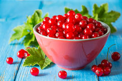Fresh red currant in bowl on blue wooden background. Stock Photo