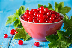 Fresh red currant in bowl on blue wooden background. Stock Photography