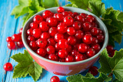Fresh red currant in bowl on blue wooden background. Stock Photos