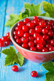 Fresh red currant in bowl on blue wooden background. Royalty Free Stock Photos