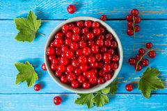Fresh red currant in bowl on blue wooden background. Royalty Free Stock Photography