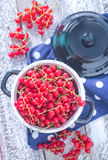 Fresh red currant Stock Photography
