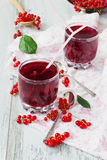 Fresh red currant drink Royalty Free Stock Photos