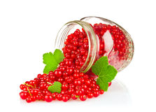 Fresh red currant with green leaf in glass jar Royalty Free Stock Image