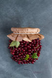 Fresh red currant. Like a jar for summer preserves cooking concept, selective focus Royalty Free Stock Images