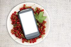 Fresh Red currant in plate and smartphone with a white screen mock up on ivory canvas, top view, copy space. Technology Internet i. Fresh Red currant in plate Royalty Free Stock Images