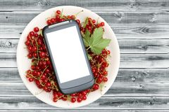 Fresh Red currant in plate and smartphone with a white screen mock up on wood table, top view, copy space. Technology Internet in. Agriculture. Applications for Stock Images