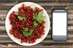 Fresh Red currant in plate and smartphone with a white screen mock up on wood table, top view, copy space. Technology Internet in. Agriculture. Applications for Stock Photography