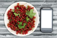 Fresh Red currant in plate and smartphone with a white screen mock up on wood table, top view, copy space. Technology Internet in. Agriculture. Applications for Royalty Free Stock Image