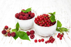 Fresh red currant and raspberries Royalty Free Stock Photos