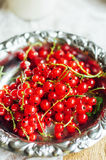 Fresh red currant on wooden table, bucket with red currant berri. Es on a garden table Stock Photography