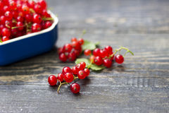 Fresh red currant on wooden table Stock Images