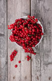 Fresh red currants. White bowl of organic red currants on a wooden table Royalty Free Stock Image