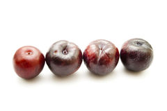 Fresh Red Dark Plums Royalty Free Stock Photography