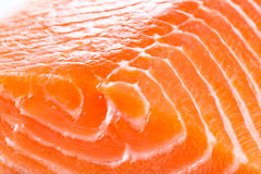 Fresh red fish macro Royalty Free Stock Photos