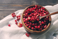 Fresh red forest cranberry in a round bowl with a wooden spoon on white linen fabric on a table surface Stock Image