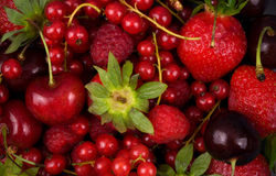 Fresh red  fruit Royalty Free Stock Photos