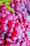 Fresh Red Grape Fruit. In the market,Thailand Stock Photography
