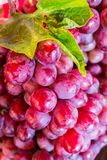 Fresh Red Grape Fruit. In the market,Thailand Stock Images