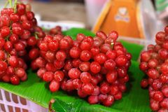 Fresh red grape Royalty Free Stock Photography