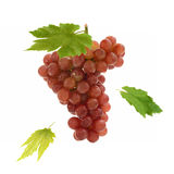 Fresh red grape and leaves suspend on white background.  Royalty Free Stock Photography