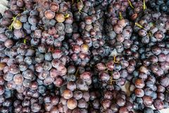 Fresh red grape at local market stock photos