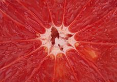 Fresh red grapefruit,  background Royalty Free Stock Photo