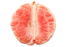 Fresh Red Grapefruit Stock Image