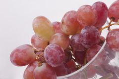 Fresh red grapes Royalty Free Stock Photos