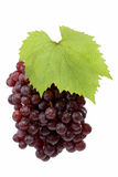 Fresh Red Grapes Stock Photo