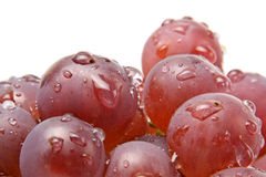 Fresh red grapes Stock Photos