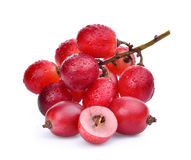 Fresh red grapes with water drops isolated on white Royalty Free Stock Photography