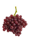 Fresh red grapes on white Royalty Free Stock Photography