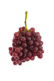 Fresh red grapes on white Royalty Free Stock Image