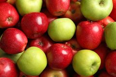 Fresh red and green apples. As background Stock Image