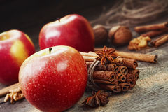 Fresh red and green apples, cinnamon sticks, ground cinnamon Stock Image